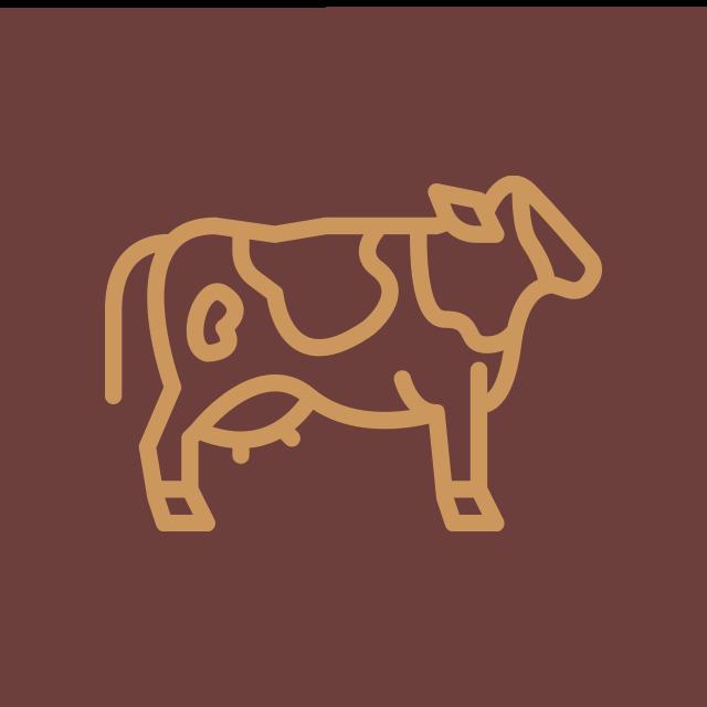 Dairy Herd Nutrition