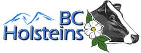 BC Holsteins Logo